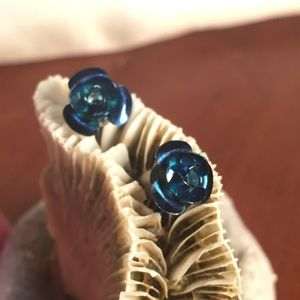 3 for $6 Jewelry Blue Rose Studs